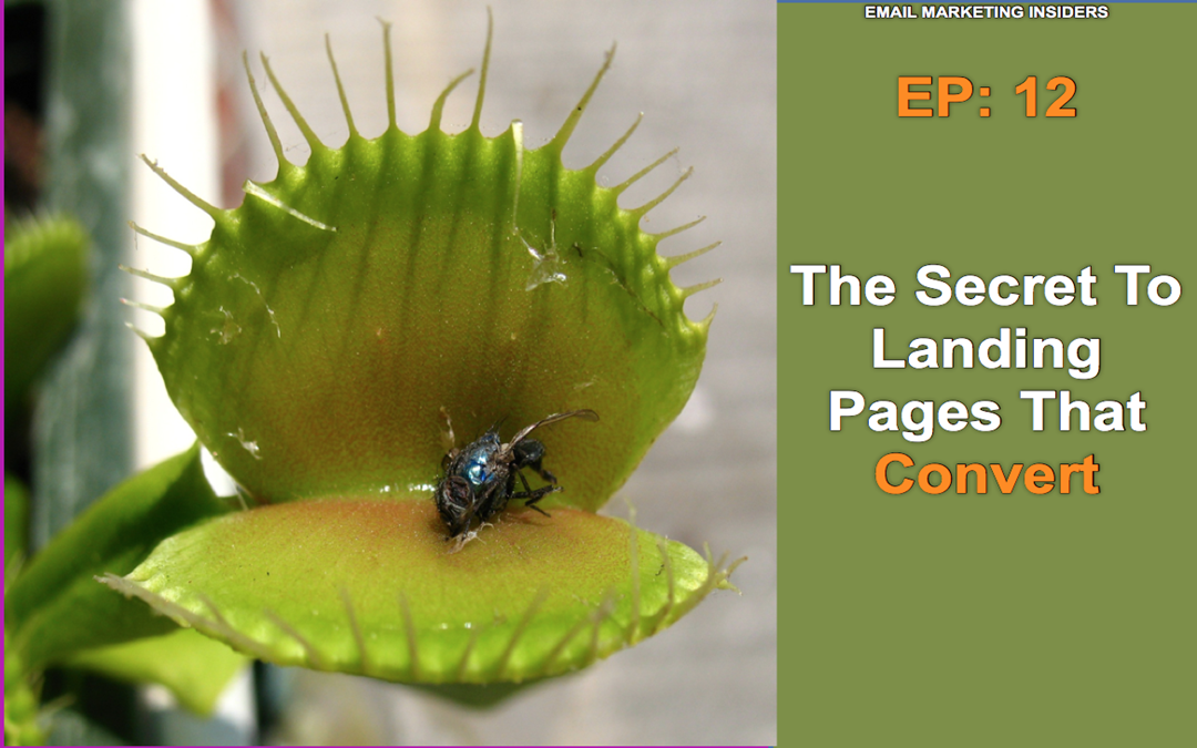 EP: 12 The Secret To Landing Pages That Convert